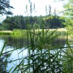 Tábor 2010 - Příroda & bourání