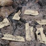Tábor 2015 - Mytologie (čarodějnice a bazilišci)